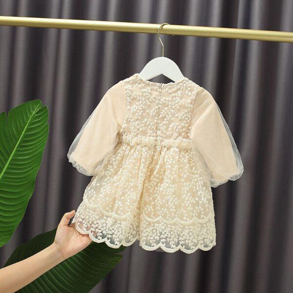 0-5Y-Baby-Girl-Dress-Lantern-Sleeve-Baby-Girls-Birthday-Dresses-for-Infant-Lace-Embroidery-Birthday-1.jpg